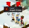 CrossTeams
