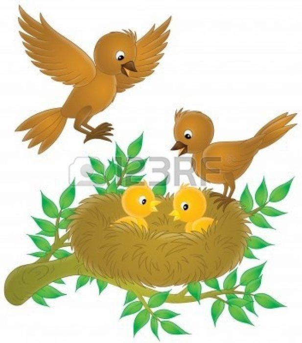 Comment gérer le nid vide ?