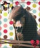 Photo de concours-equins