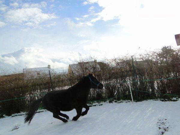 La neige♥