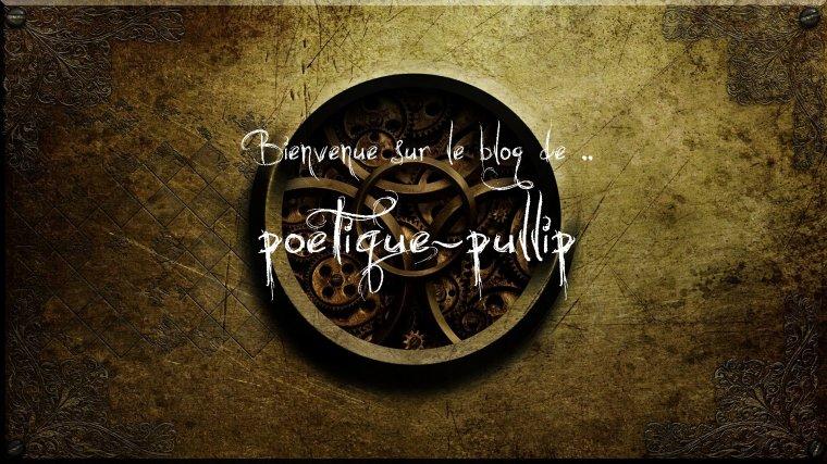 Présentation du blog (2015 edition)
