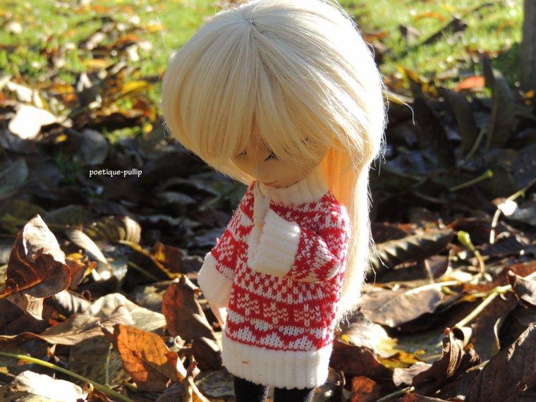 l'hiver approche! plus de feuilles dans les arbre ...