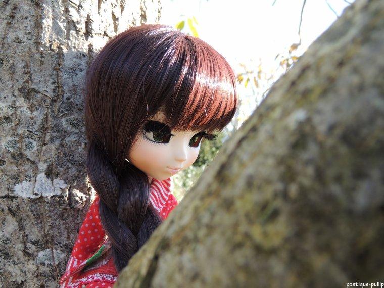 l'hiver approche! plus de feuilles dans les arbre ...(part 2)