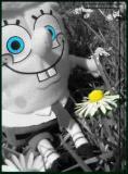 Photo de zakzouk03