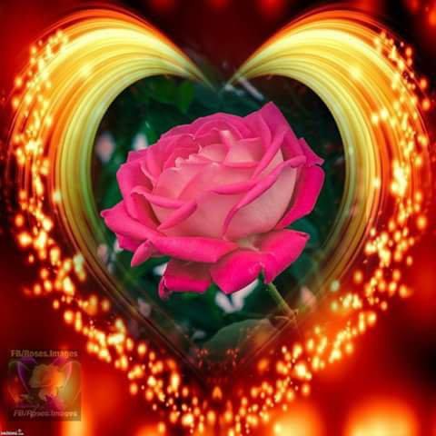 Amour et paix