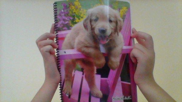 le cahier qui ma donner envie de me reprendre en main!