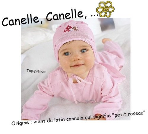 Cannelle, Canelle, ...