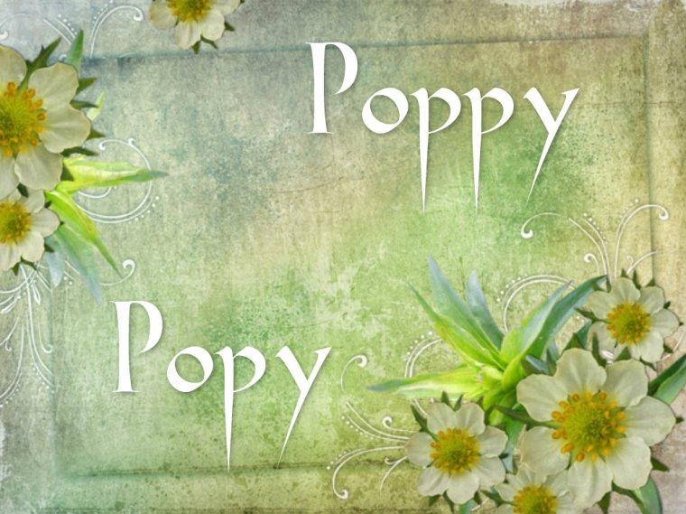 Poppy, Popy
