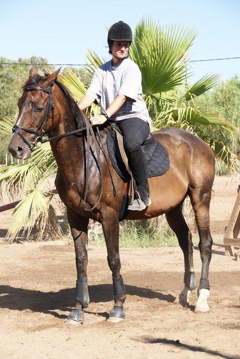 """"""" Etre heureux à cheval, c'est être entre ciel et terre, à une hauteur qui n'existe pas ... """"                                                                                                                               Jérôme Garcin"""
