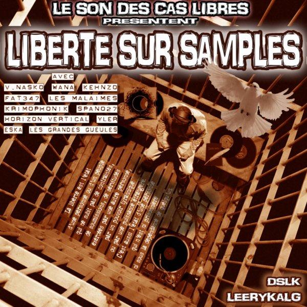 """SORTIE DE LA GUEST TAPE: """"LIBERTE SUR SAMPLES"""""""