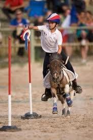 Le Pony games est un sport d'équipe de cavalier et de cheval !