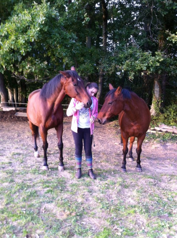 Je suis rentrer de vacance et je voulais vous annoncez que je m'occupe de deux chevaux et j'ai besoin de renseignement !!! :) venez en privez si vous savez comment faire lorsqu'un cheval vous regarde lorsque vous le longer c'est important j'expliquerai à celle ou celui qui m'aidera ! :)