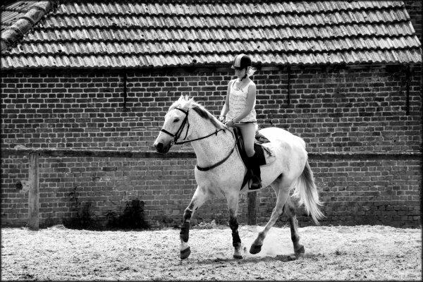 """"""" Le cheval est la plus noble conquête de l'homme ! """" ♥"""