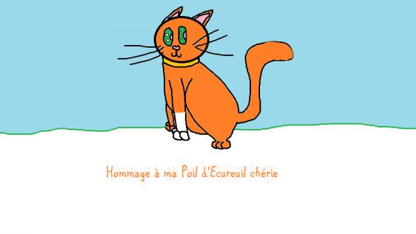 Poil d'Ecureuil