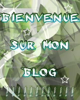 Bienvenue sur mon blog...
