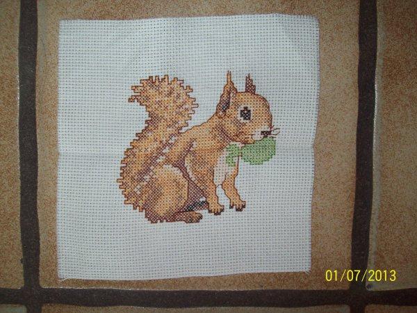 voici un écureuil.