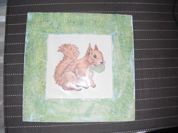 j'ai encadrer mon écureuil.