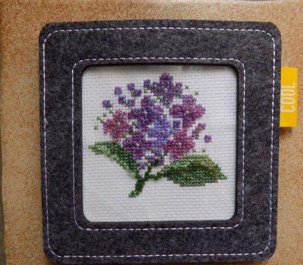 violettes en cadre