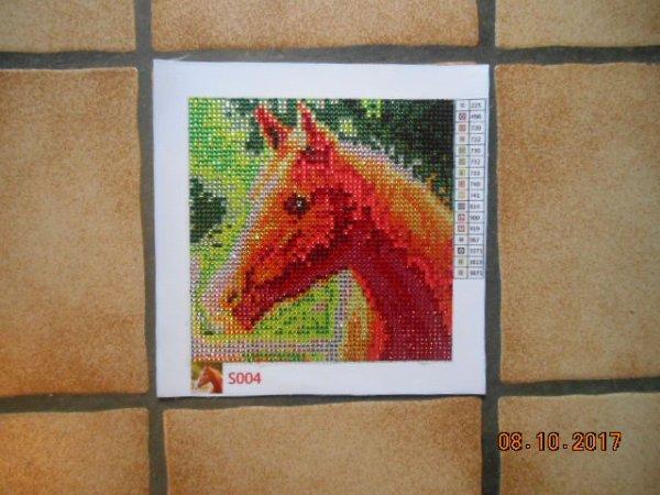 un cheval en broderie diamant.