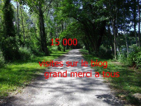 15 000 visite sur le blog