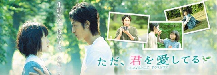 Heavenly Forest: Film Japonais