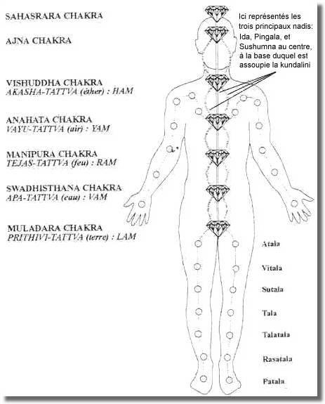 Aperçu exhaustif des corps subtiles de l'Homme