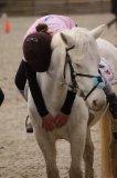 Photo de Pony-games--Lau