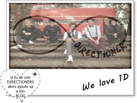 Petit article (qui n'a rien avoir avec la mode mais One Direction)
