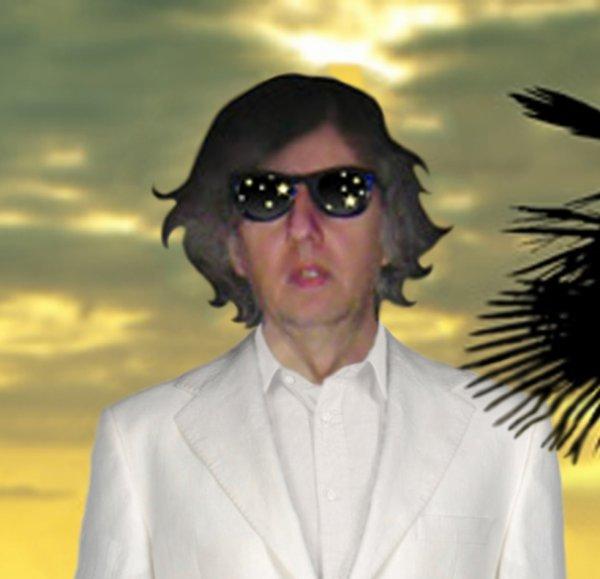 Michel François  un chanteur au son électronique