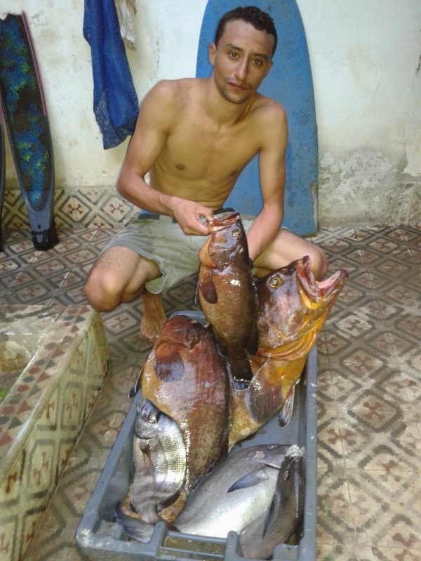 #spearfishing#morocco#estricho