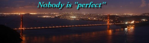 Nobody is ''perfect''.