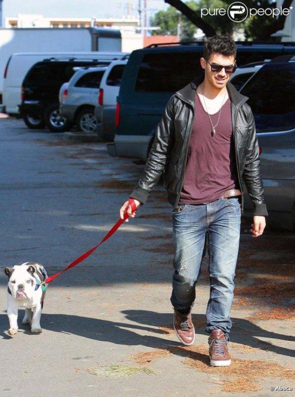 Joe Jonas et Winston son chien