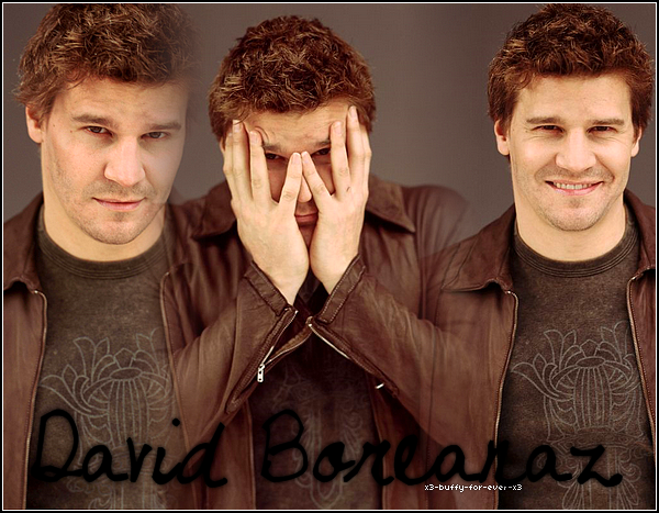 Artiicle o6'   David Boreanaz Angel: Le vampire Sexy