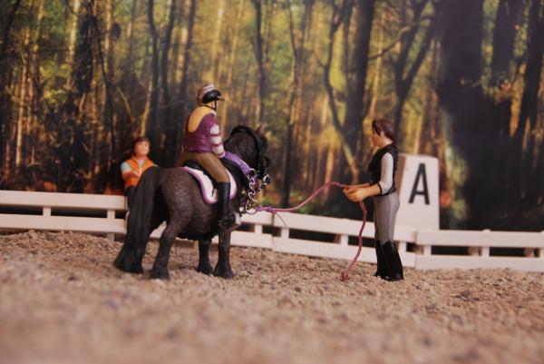 """""""Ah ! Te voilà Julie ! Je commençais à préparer ton poney !"""""""