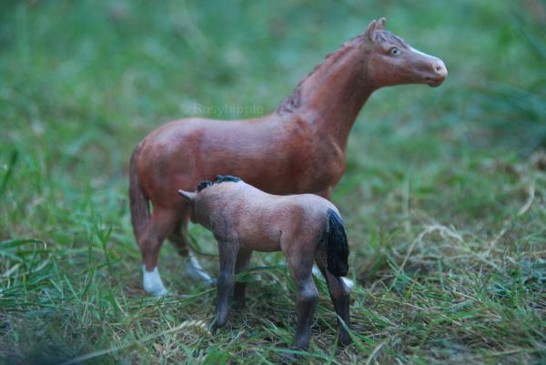 """""""JAMAIS tu ne me feras monter un cheval contre mon gré ! JAMAIS !"""""""