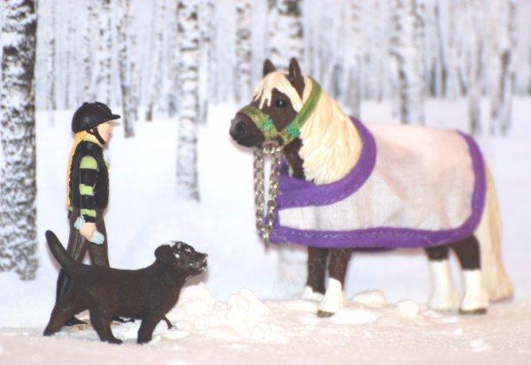 """""""Le froid s'installait, les nouveaux chevaux arrivaient."""""""