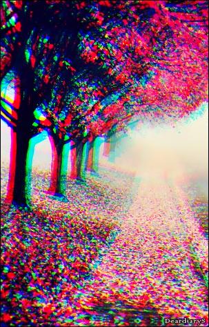 ... Champs fleuris - Bienvenue ♥...