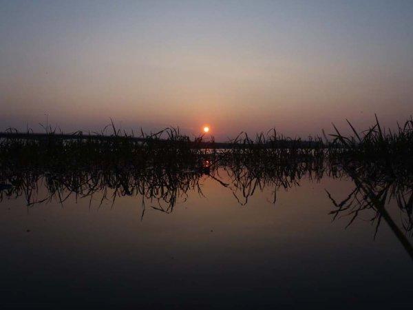 Lake Biwa/Zeze park