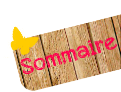 ★ Sommaire / Archives ★