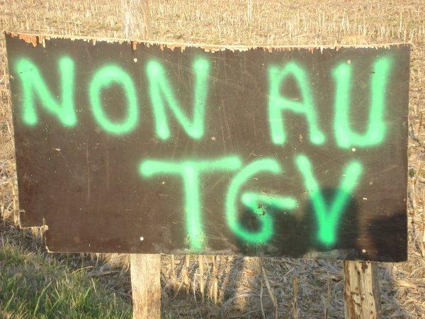NON AU TGV LYON - TURIN