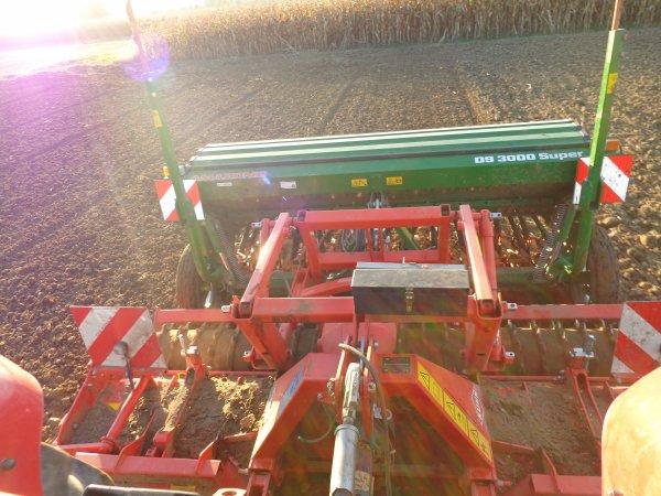 Semi du blé 2013