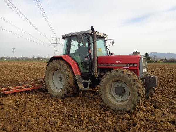 Hersage des terres a maïs 2014