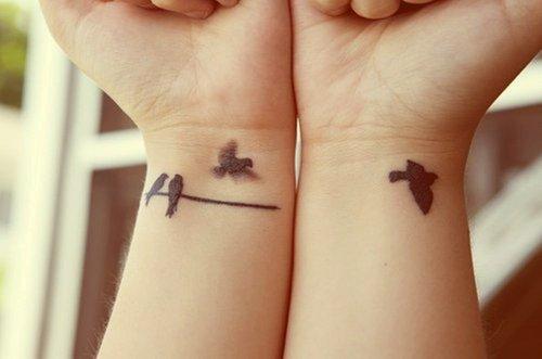 Série oiseaux.