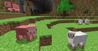 Les Animaux : Le Cochon et Le Mouton