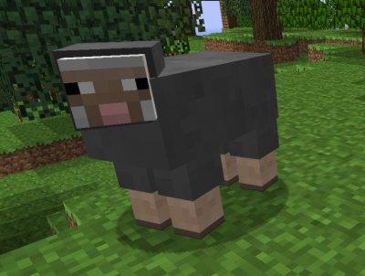 Mouton et Blocs de Couleurs ?