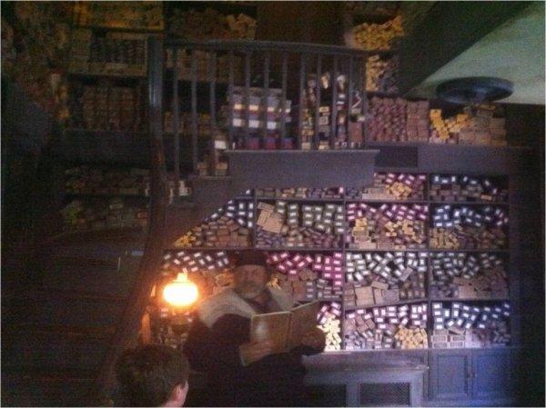 Réel Baguette Ollivander dans les véritables boites.