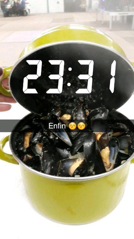 Jour 1: repas des martins pêcheurs