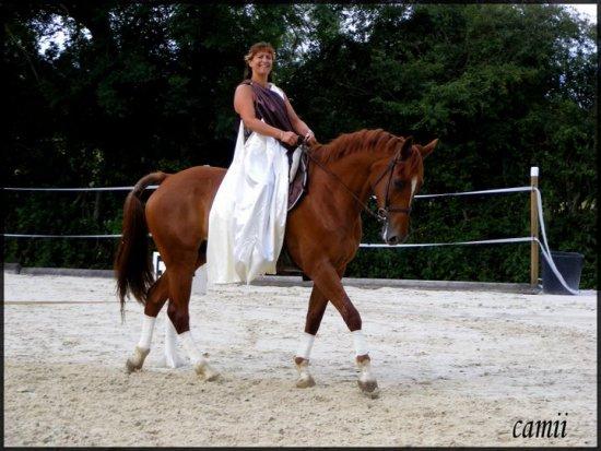 centre equestre 52