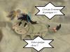 les aventures de stitch et tigrou ^^ suite