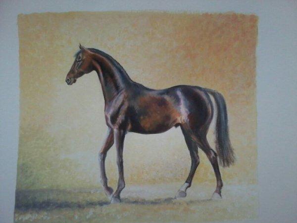 Gouache 23 x 23 cm expo Spa Belgique...